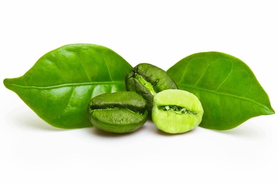 Cafe verde extracto y grano comprar producto adelgazar natural al cien por cien green coffe diet dieta del café verde www.cienporciennatural.es 100% naturales para perder peso